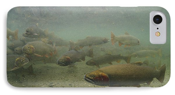 Cutthroat Trout Swim Phone Case by Michael S. Quinton