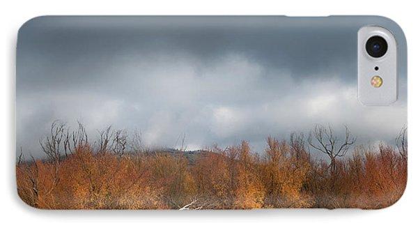 Cuyamaca Autumn IPhone Case by Joseph Smith