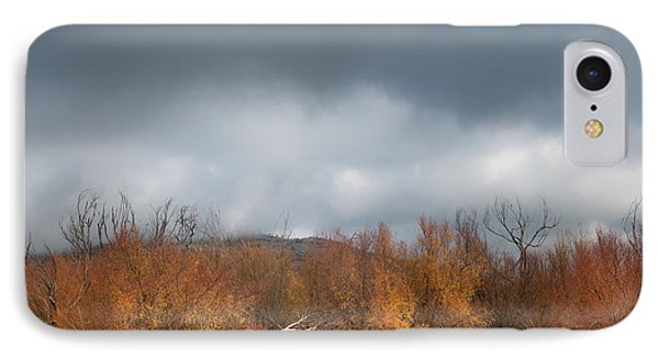 Cuyamaca Autumn IPhone Case by Joseph Smith