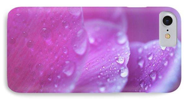 Cyclamen Flower Macro IPhone Case