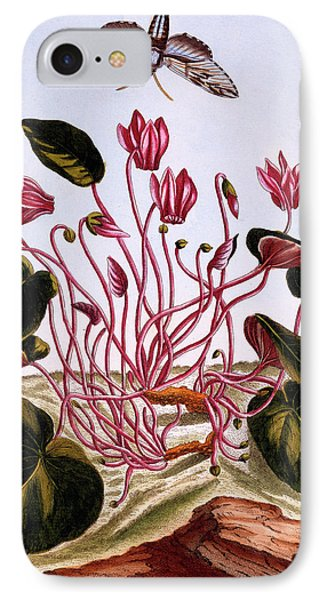 Cyclamen IPhone Case by Pierre-Joseph Buchoz