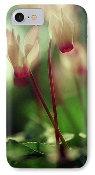 Cyclamens IPhone 7 Case by Dubi Roman