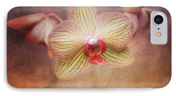 Cymbidium Orchid IPhone Case by Tom Mc Nemar