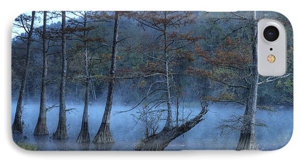 IPhone Case featuring the photograph Cypress Awakening by Tamyra Ayles