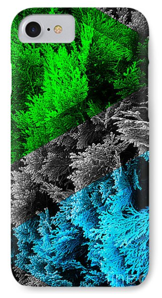 Cypress Branches No.6 IPhone Case