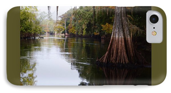 Cypress High Water Mark IPhone Case by Warren Thompson