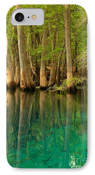 Cypress Reflections In Blue IPhone Case by Adam Jewell