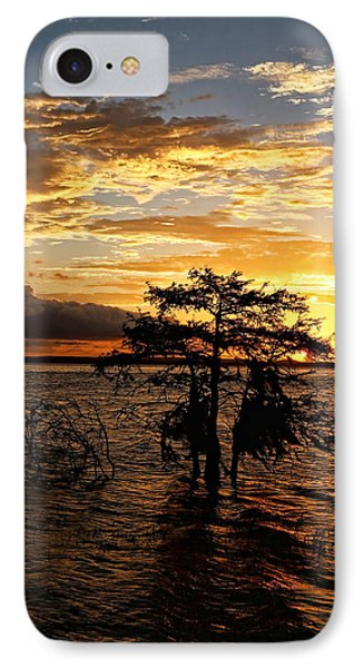 Cypress Sunset IPhone Case by Judy Vincent