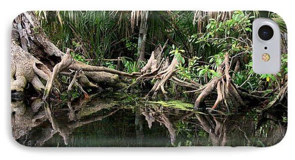 Cypress Swamp  IPhone Case by Barbara Bowen