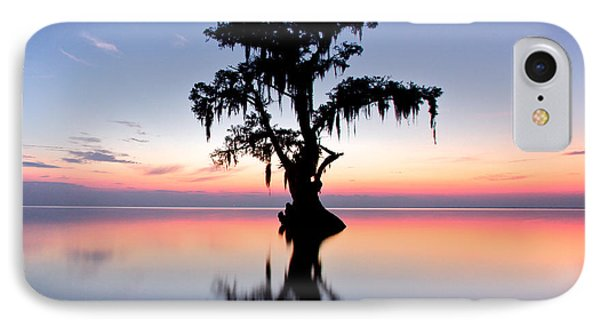 IPhone Case featuring the photograph Cypress Tree by Evgeny Vasenev