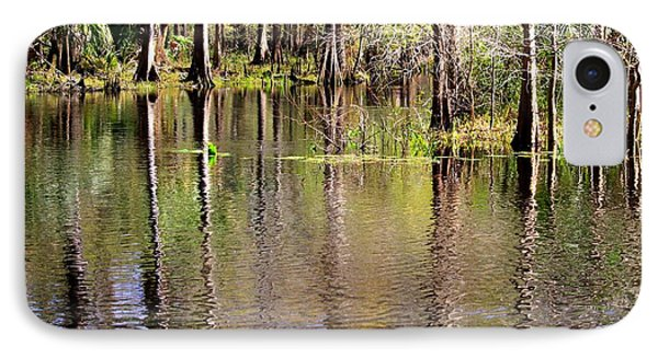 Cypress Trees Along The Hillsborough River Phone Case by Carol Groenen
