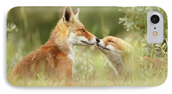 Daddy's Girl - Red Fox Father And Its Young Fox Kit IPhone Case