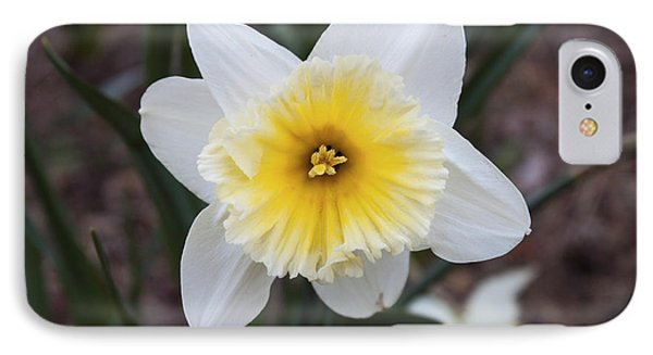IPhone Case featuring the photograph Daffodil At Black Creek by Jeff Severson