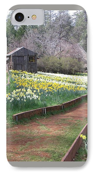 Daffodil Hill Pathway IPhone Case by Karen J Shine