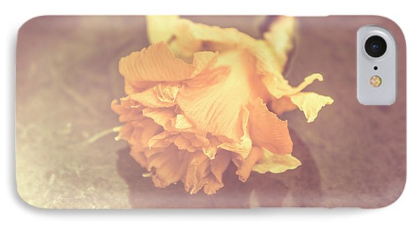 Daffodil Reflections  IPhone Case by Jorgo Photography - Wall Art Gallery