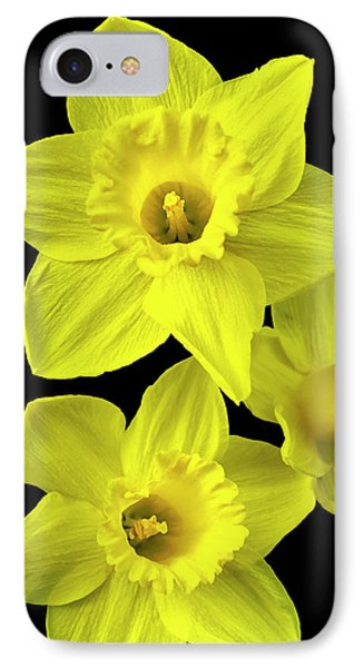 IPhone 7 Case featuring the photograph Daffodils by Christina Rollo