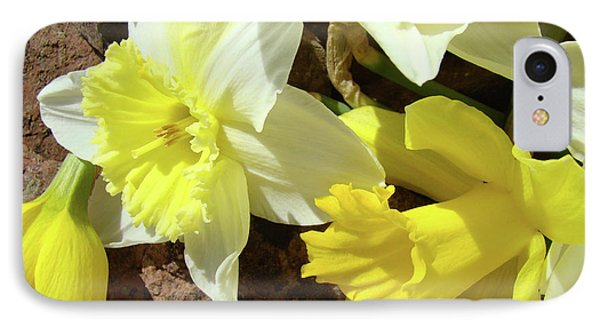 Daffodils Flower Bouquet Rustic Rock Art Daffodil Flowers Artwork Spring Floral Art Phone Case by Baslee Troutman