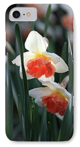 Daffodils Spring Is Here Phone Case by Pierre Leclerc Photography