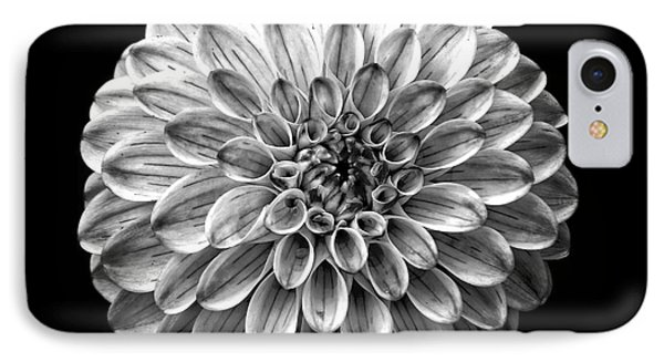 Dahlia  Flower Black And White Square IPhone Case by Edward Fielding