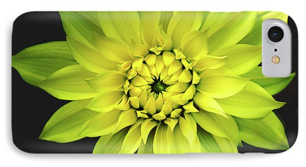 IPhone Case featuring the photograph Dahlia In Yellow by Julie Palencia