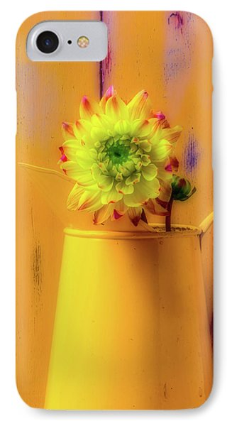 Dahlia In Yellow Pitcher IPhone Case