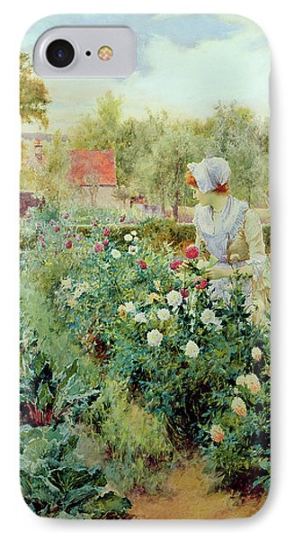 Dahlias IPhone Case by Alfred Glendening
