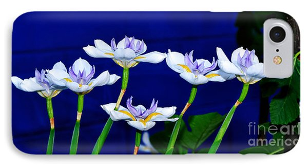 Dainty White Irises All In A Row IPhone Case by Kaye Menner