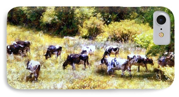 Dairy Cows In A Summer Pasture IPhone Case