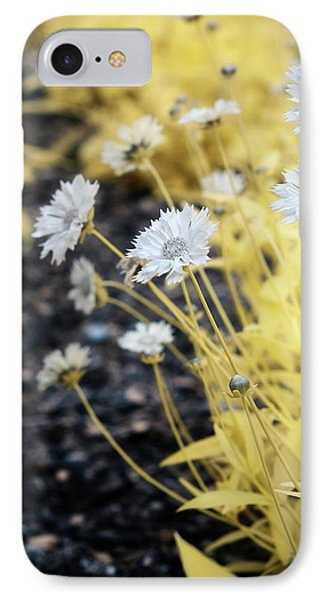 Daisey IPhone Case by Paul Seymour