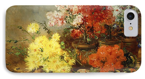 Daisies, Begonia, And Other Flowers In Pots IPhone Case