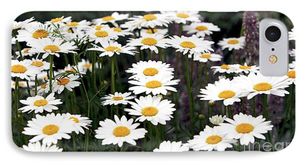Daisies Phone Case by John Rizzuto