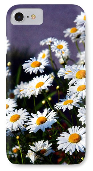 Daisies Phone Case by Lana Trussell