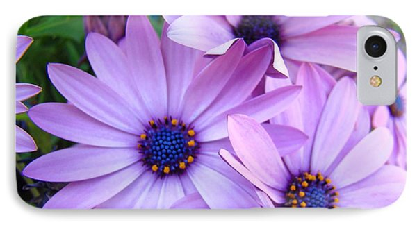 Daisies Lavender Purple Daisy Flowers Baslee Troutman Phone Case by Baslee Troutman