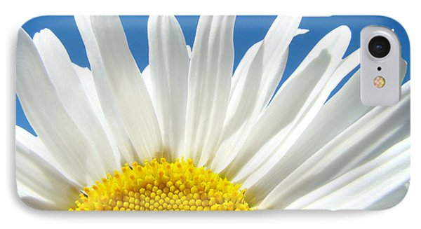 Daisy Art Prints White Daisies Flowers Blue Sky IPhone Case by Baslee Troutman