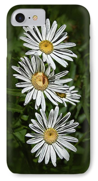 IPhone Case featuring the photograph Daisy Chain by Marie Leslie