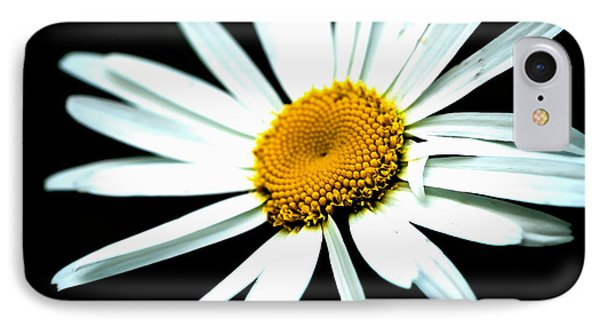 IPhone Case featuring the photograph Daisy Flower - White Sun by Alexander Senin