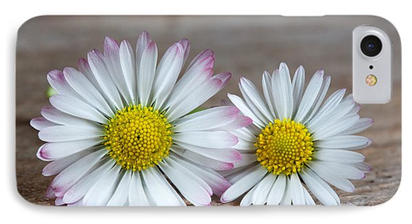 Daisy iPhone 7 Case - Daisy Flowers by Nailia Schwarz