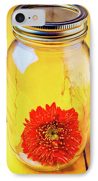 Daisy In Glass Jar Phone Case by Garry Gay