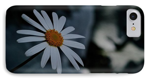 Daisy In Gloom IPhone Case by Tim Good