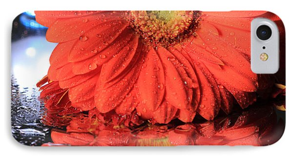 Daisy Reflections IPhone Case by Angela Murdock