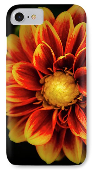 IPhone Case featuring the photograph Dalaya Shiva Dahlia by Julie Palencia