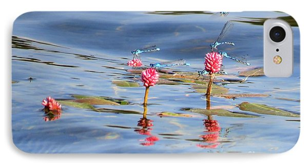 Damselflies On Smartweed IPhone Case