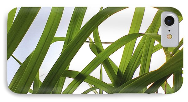 IPhone Case featuring the photograph Dancing Bamboo by Rebecca Harman