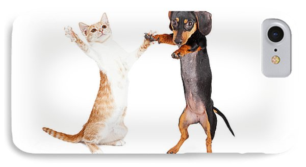 Dancing Doxie Dog And Kitten IPhone Case by Susan Schmitz