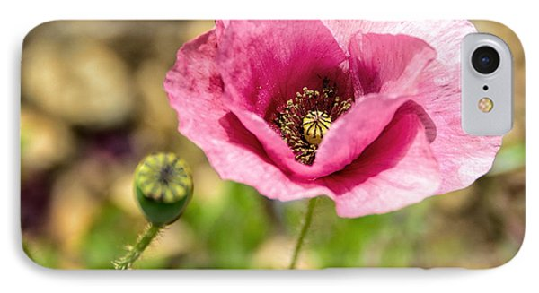 IPhone Case featuring the photograph Dancing Pink Poppy by Marion McCristall