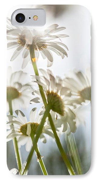 Dancing With Daisies IPhone Case by Aaron Aldrich