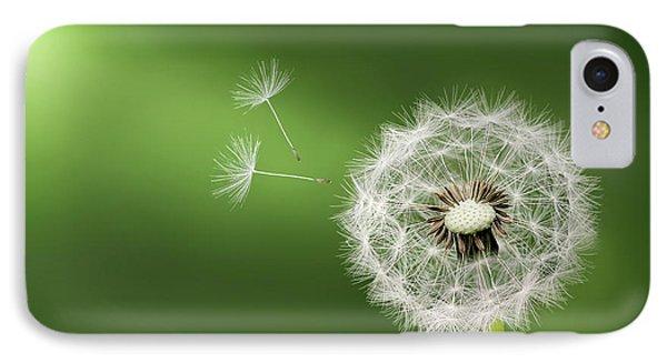 Dandelion IPhone Case by Bess Hamiti
