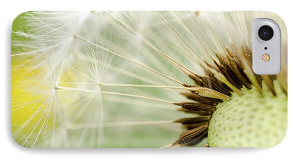 Dandelion Fluff IPhone Case
