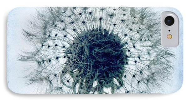 Dandelion In Blue IPhone Case by Tamyra Ayles