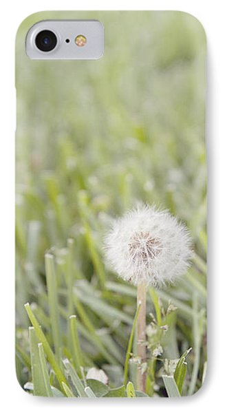 IPhone Case featuring the photograph Dandelion In The Grass by Cindy Garber Iverson